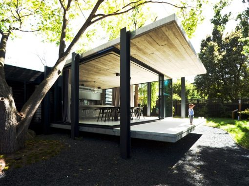 The Extension That Protects Nature's Surroundings